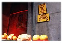 Irradiations aliments